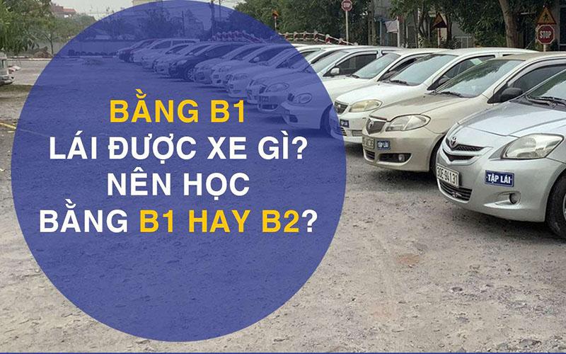 Tư vấn nên học bằng lái xe ô tô B1 hay B2?